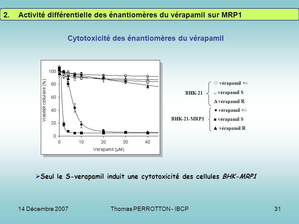 14 Décembre 2007Thomas PERROTTON - IBCP31 Seul le S-verapamil induit une cytotoxicité des cellules BHK-MRP1 Cytotoxicité des énantiomères du vérapamil vérapamil +/- vérapamil S vérapamil R vérapamil +/- vérapamil S vérapamil R BHK-21 BHK-21-MRP1 2.Activité différentielle des énantiomères du vérapamil sur MRP1