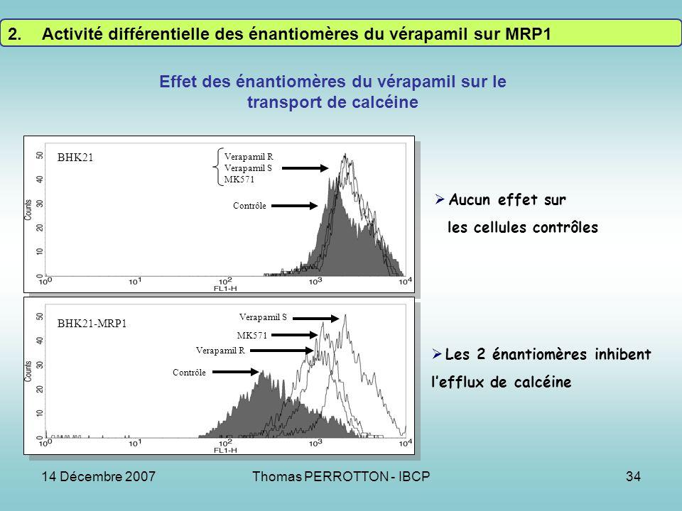14 Décembre 2007Thomas PERROTTON - IBCP34 Effet des énantiomères du vérapamil sur le transport de calcéine Contrôle Verapamil R Verapamil S MK571 BHK21 Contrôle Verapamil R MK571 Verapamil S BHK21-MRP1 Aucun effet sur les cellules contrôles Les 2 énantiomères inhibent lefflux de calcéine 2.Activité différentielle des énantiomères du vérapamil sur MRP1