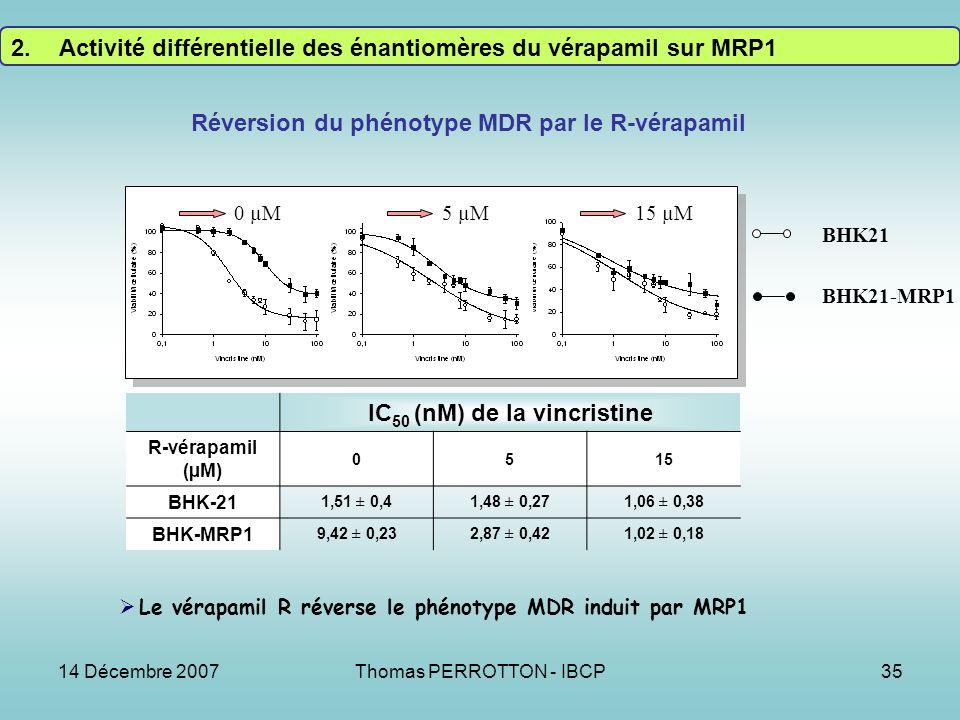 14 Décembre 2007Thomas PERROTTON - IBCP35 IC 50 (nM) de la vincristine R-vérapamil (µM) 0515 BHK-21 1,51 ± 0,41,48 ± 0,271,06 ± 0,38 BHK-MRP1 9,42 ± 0,232,87 ± 0,421,02 ± 0,18 BHK21 BHK21-MRP1 Réversion du phénotype MDR par le R-vérapamil 0 µM15 µM5 µM Le vérapamil R réverse le phénotype MDR induit par MRP1 2.Activité différentielle des énantiomères du vérapamil sur MRP1