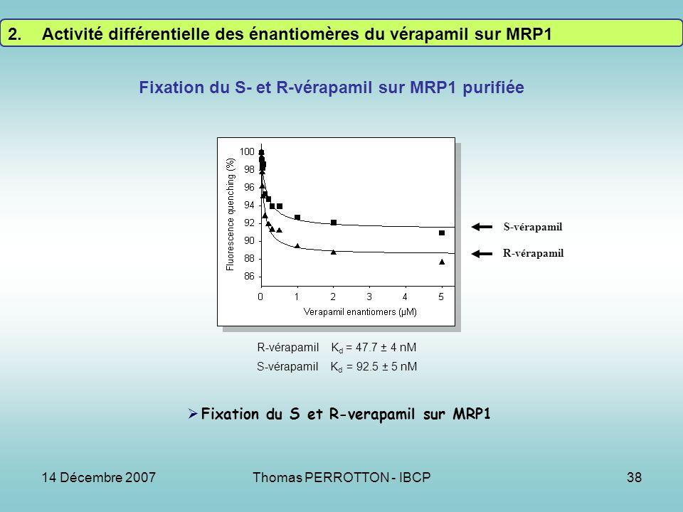 14 Décembre 2007Thomas PERROTTON - IBCP38 R-vérapamil S-vérapamil Fixation du S- et R-vérapamil sur MRP1 purifiée Fixation du S et R-verapamil sur MRP1 R-vérapamil K d = 47.7 ± 4 nM S-vérapamil K d = 92.5 ± 5 nM 2.Activité différentielle des énantiomères du vérapamil sur MRP1