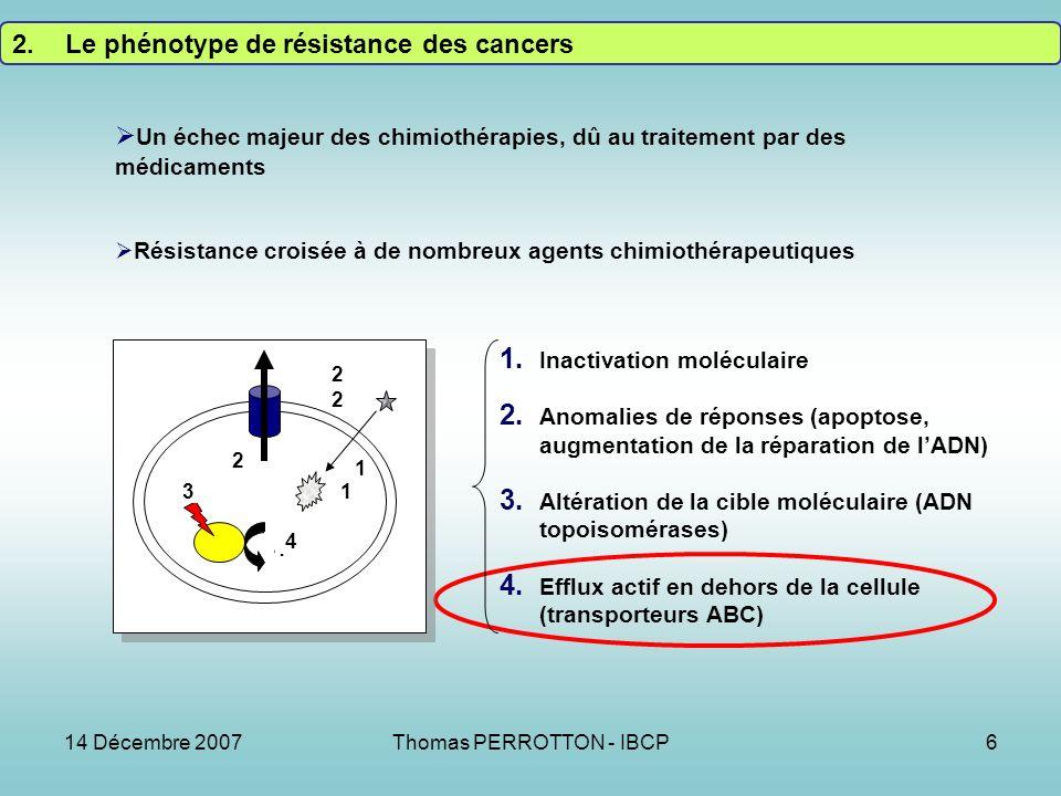14 Décembre 2007Thomas PERROTTON - IBCP6 2.Le phénotype de résistance des cancers 1.
