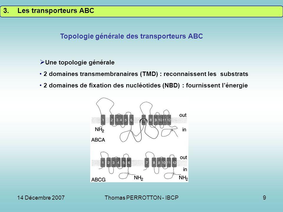 14 Décembre 2007Thomas PERROTTON - IBCP9 Topologie générale des transporteurs ABC Une topologie générale 2 domaines transmembranaires (TMD) : reconnaissent les substrats 2 domaines de fixation des nucléotides (NBD) : fournissent lénergie 3.Les transporteurs ABC