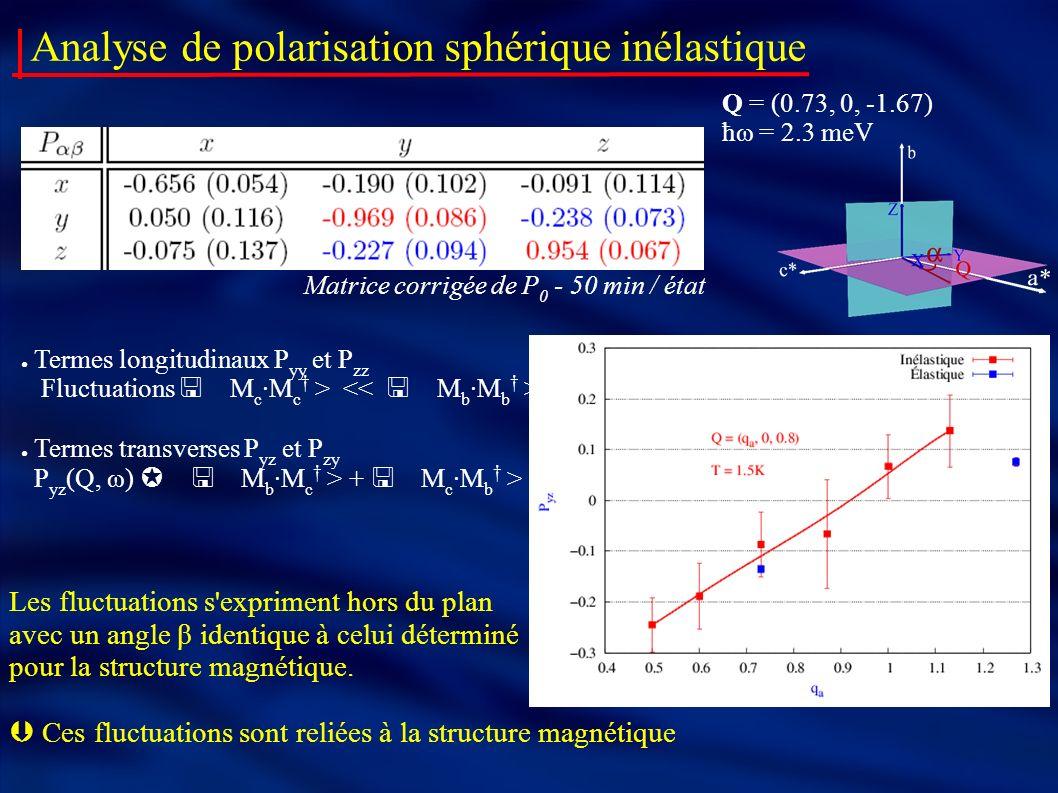 Analyse de polarisation sphérique inélastique Q = (0.73, 0, -1.67) ħω = 2.3 meV Termes longitudinaux P yy et P zz Fluctuations Termes transverses P yz et P zy P yz (Q, ω) + Les fluctuations s expriment hors du plan avec un angle β identique à celui déterminé pour la structure magnétique.