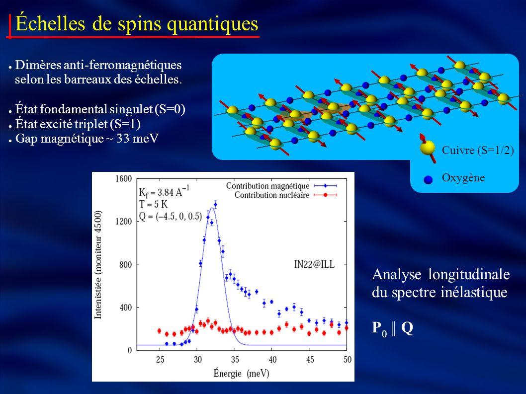 Échelles de spins quantiques Dimères anti-ferromagnétiques selon les barreaux des échelles. État fondamental singulet (S=0) État excité triplet (S=1)