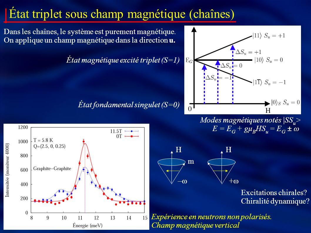 État triplet sous champ magnétique (chaînes) Expérience en neutrons non polarisés. Champ magnétique vertical État magnétique excité triplet (S=1) Mode