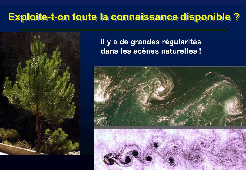 iMAGIS-GRAVIR / IMAG Exploite-t-on toute la connaissance disponible ? Il y a de grandes régularités dans les scènes naturelles !