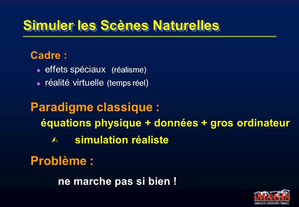 iMAGIS-GRAVIR / IMAG Exemple 2: Synthèse de déchirures S. Lefebvre