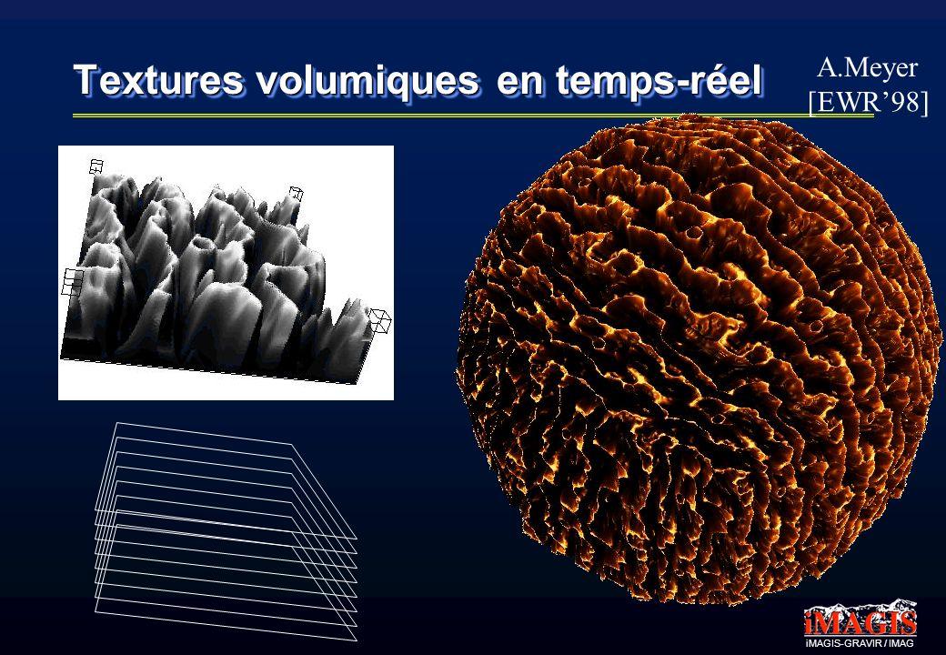iMAGIS-GRAVIR / IMAG Textures volumiques en temps-réel A.Meyer [EWR98]