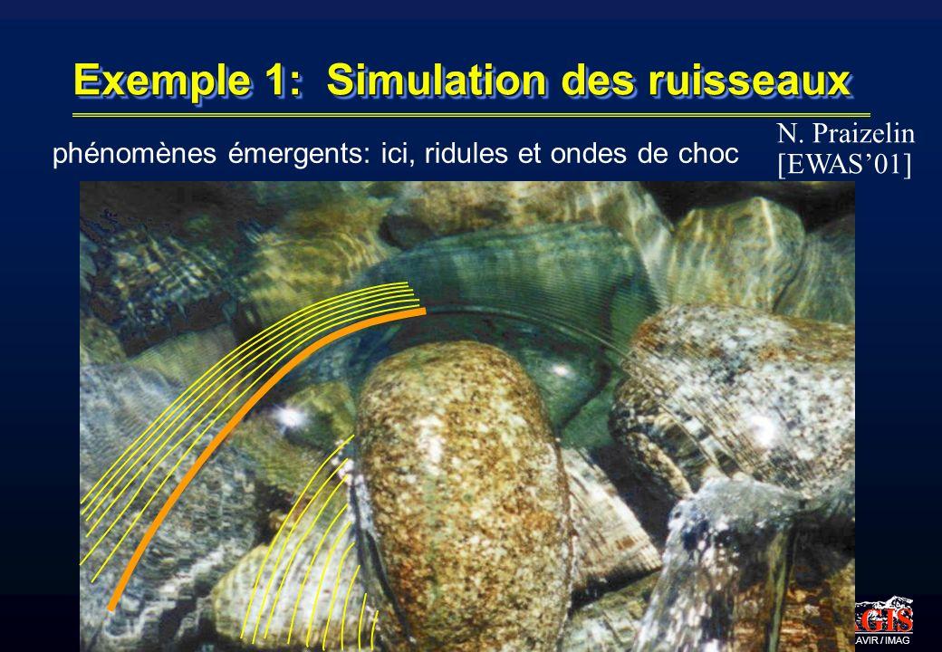 iMAGIS-GRAVIR / IMAG Exemple 1: Simulation des ruisseaux phénomènes émergents: ici, ridules et ondes de choc N. Praizelin [EWAS01]