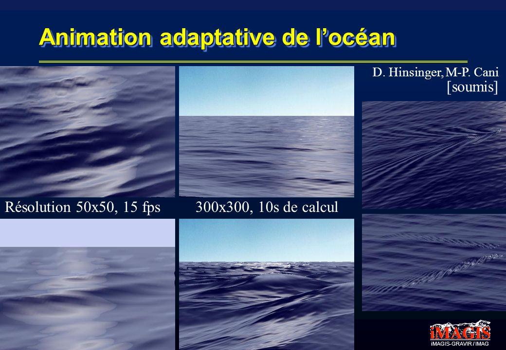 iMAGIS-GRAVIR / IMAG Animation adaptative de locéan 300x300, 10s de calculRésolution 50x50, 15 fps D. Hinsinger, M-P. Cani [soumis]