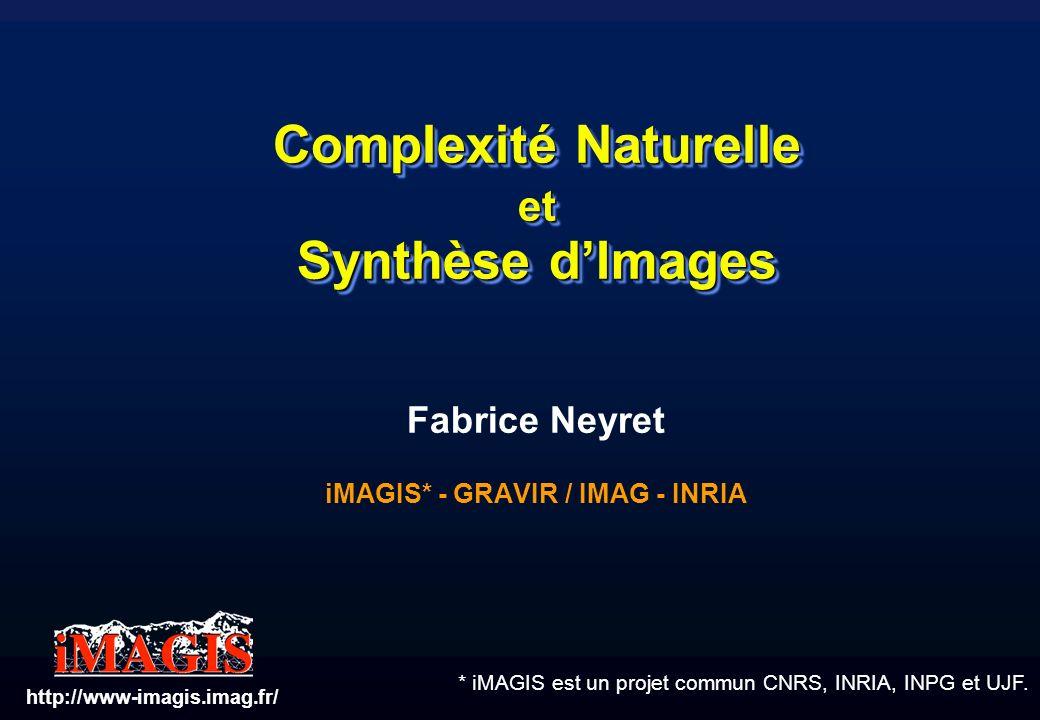 * iMAGIS est un projet commun CNRS, INRIA, INPG et UJF. Complexité Naturelle et Synthèse dImages Fabrice Neyret iMAGIS* - GRAVIR / IMAG - INRIA http:/