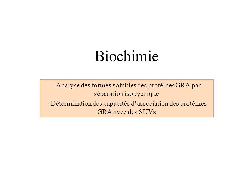 Biochimie - Analyse des formes solubles des protéines GRA par séparation isopycnique - Détermination des capacités dassociation des protéines GRA avec