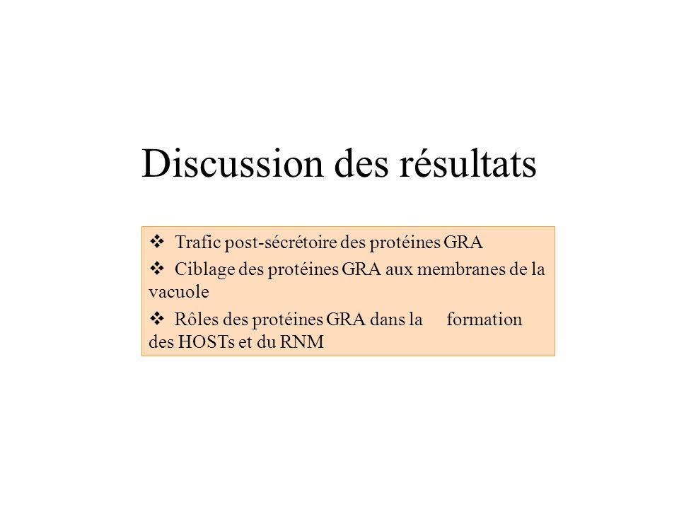 Discussion des résultats Trafic post-sécrétoire des protéines GRA Ciblage des protéines GRA aux membranes de la vacuole Rôles des protéines GRA dans l