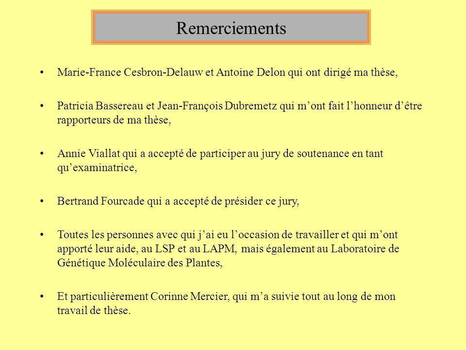 Remerciements Marie-France Cesbron-Delauw et Antoine Delon qui ont dirigé ma thèse, Patricia Bassereau et Jean-François Dubremetz qui mont fait lhonne