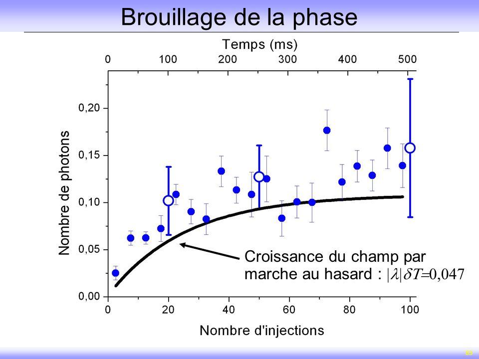 83 Brouillage de la phase Croissance du champ par marche au hasard :