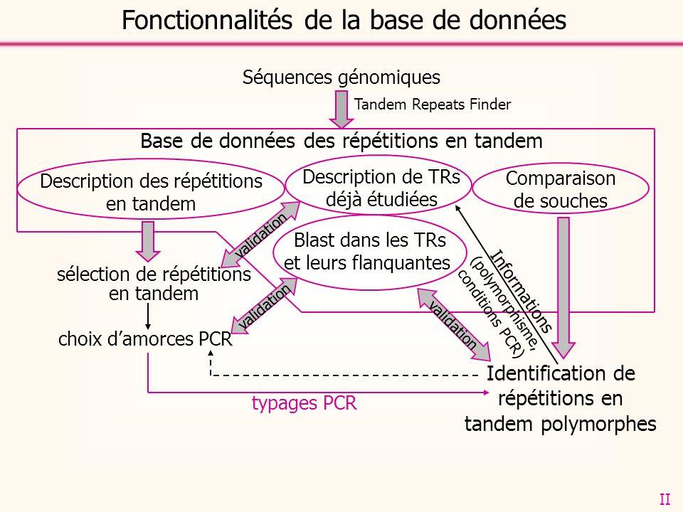 Séquences génomiques Description des répétitions en tandem Comparaison de souches Blast dans les TRs et leurs flanquantes sélection de répétitions en tandem Identification de répétitions en tandem polymorphes choix damorces PCR typages PCR Description de TRs déjà étudiées Base de données des répétitions en tandem validation Fonctionnalités de la base de données Tandem Repeats Finder Informations (polymorphisme, conditions PCR) II