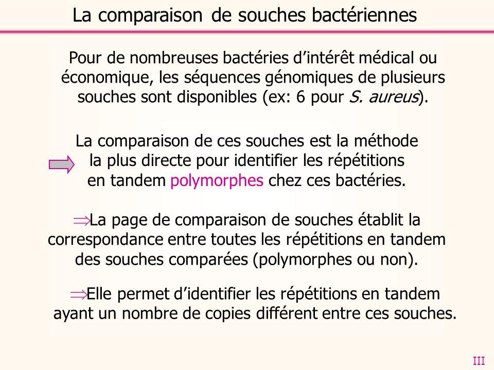 La page de comparaison de souches établit la correspondance entre toutes les répétitions en tandem des souches comparées (polymorphes ou non).