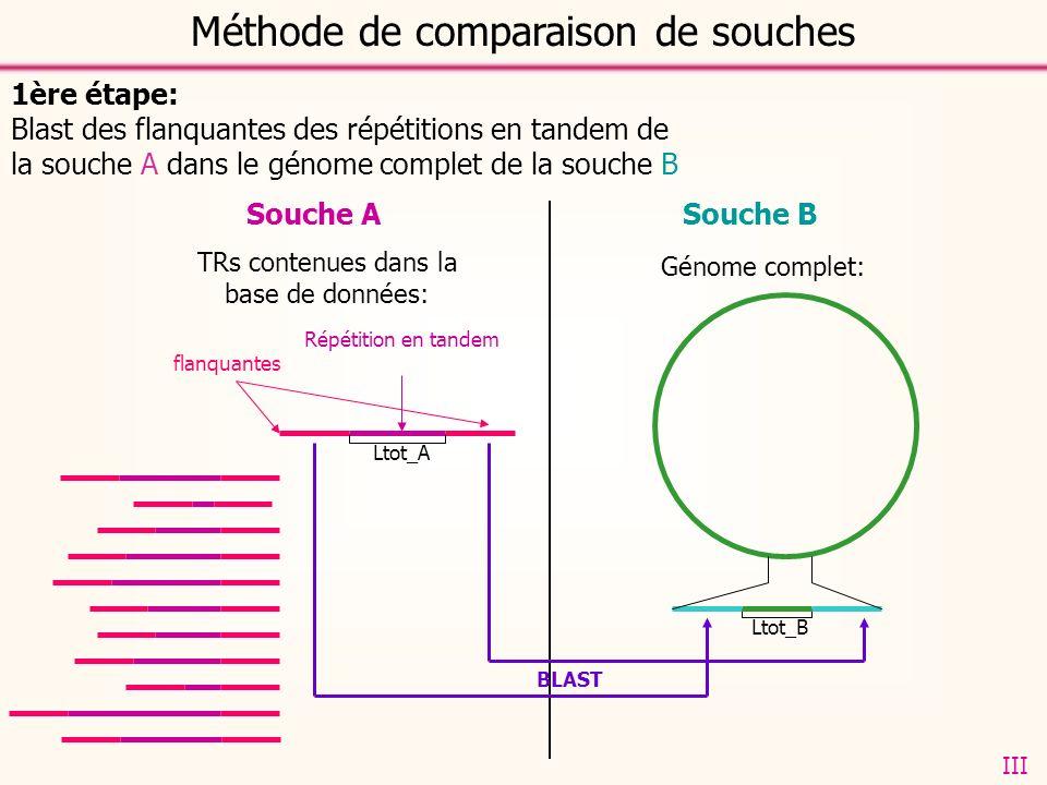 Souche ASouche B 1ère étape: Blast des flanquantes des répétitions en tandem de la souche A dans le génome complet de la souche B TRs contenues dans la base de données: flanquantes Répétition en tandem Génome complet: Ltot_A Ltot_B BLAST Méthode de comparaison de souches III