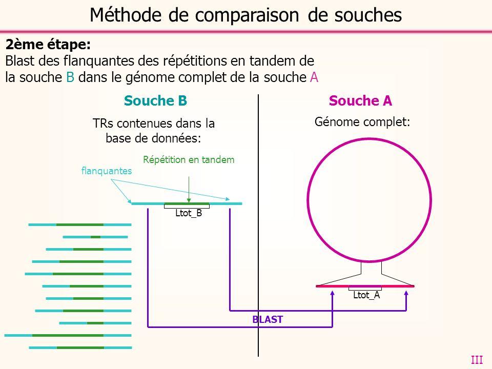 Souche ASouche B 2ème étape: Blast des flanquantes des répétitions en tandem de la souche B dans le génome complet de la souche A TRs contenues dans la base de données: flanquantes Répétition en tandem Génome complet: Ltot_B Ltot_A BLAST Méthode de comparaison de souches III