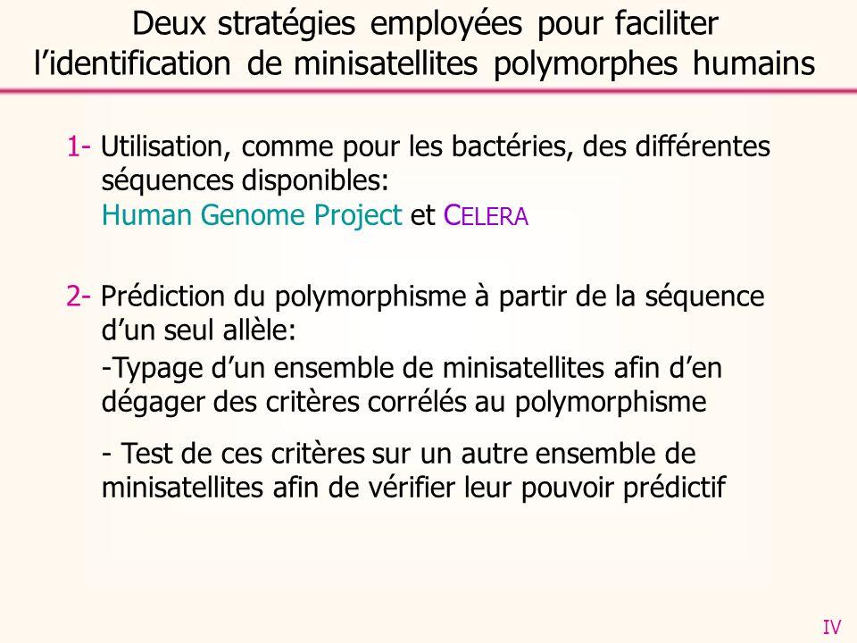 1- Utilisation, comme pour les bactéries, des différentes séquences disponibles: Human Genome Project et C ELERA -Typage dun ensemble de minisatellites afin den dégager des critères corrélés au polymorphisme - Test de ces critères sur un autre ensemble de minisatellites afin de vérifier leur pouvoir prédictif Deux stratégies employées pour faciliter lidentification de minisatellites polymorphes humains 2- Prédiction du polymorphisme à partir de la séquence dun seul allèle: IV