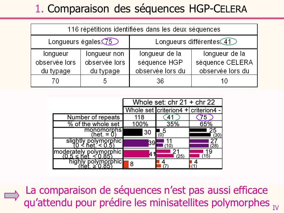 1. Comparaison des séquences HGP-C ELERA IV - Lorsque les séquences CELERA et HGP sont de longueurs différentes, la longueur proposée par CELERA est s
