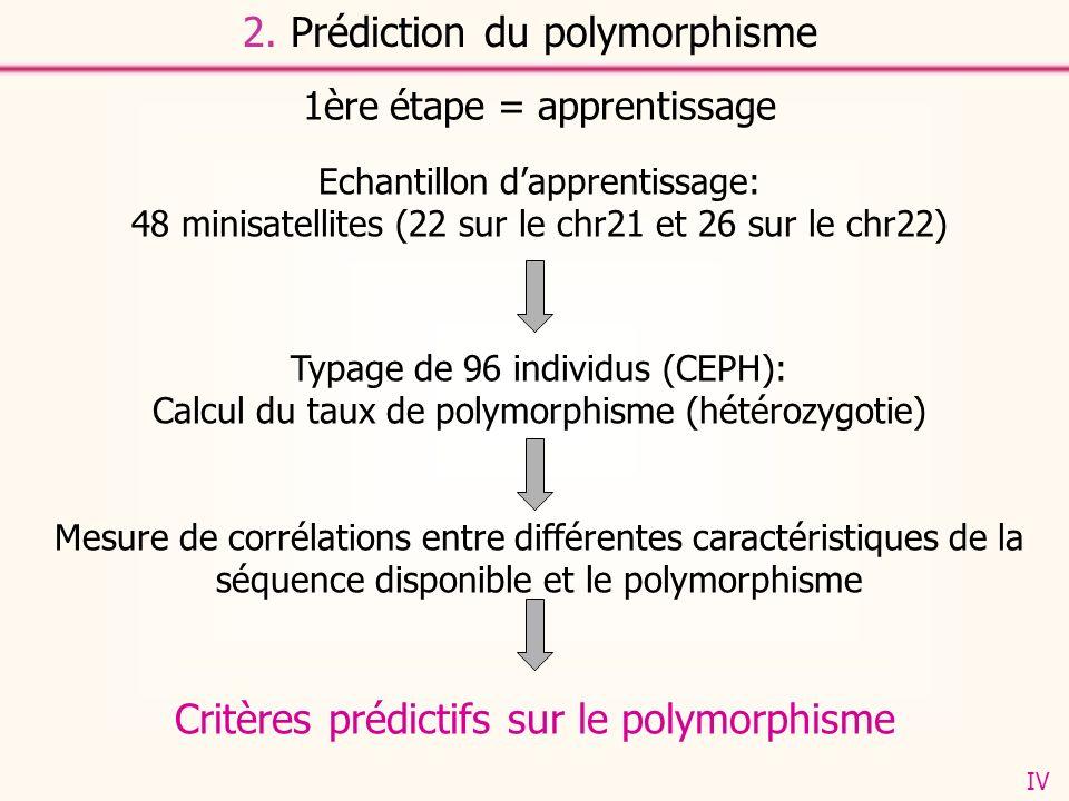 1ère étape = apprentissage Echantillon dapprentissage: 48 minisatellites (22 sur le chr21 et 26 sur le chr22) Typage de 96 individus (CEPH): Calcul du taux de polymorphisme (hétérozygotie) Mesure de corrélations entre différentes caractéristiques de la séquence disponible et le polymorphisme Critères prédictifs sur le polymorphisme 2.