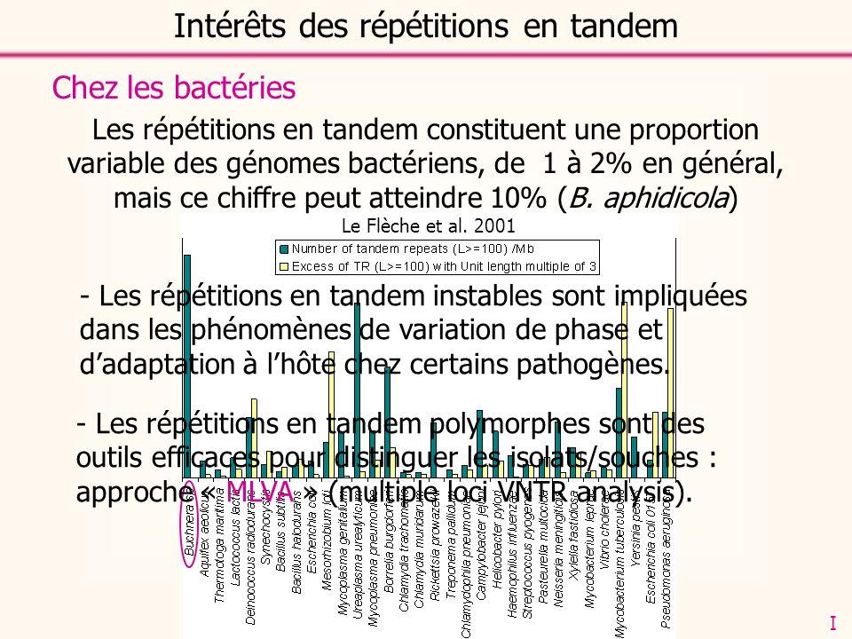 Le Flèche et al. 2001 Intérêts des répétitions en tandem Chez les bactéries - Les répétitions en tandem instables sont impliquées dans les phénomènes