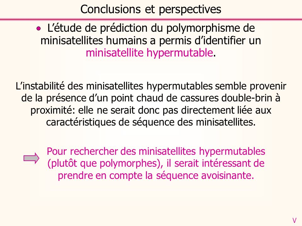 Conclusions et perspectives V Linstabilité des minisatellites hypermutables semble provenir de la présence dun point chaud de cassures double-brin à proximité: elle ne serait donc pas directement liée aux caractéristiques de séquence des minisatellites.