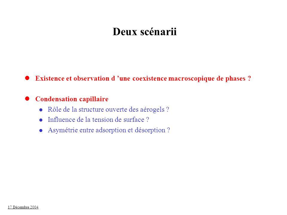 17 Décembre 2004 Deux scénarii lExistence et observation d une coexistence macroscopique de phases ? lCondensation capillaire l Rôle de la structure o