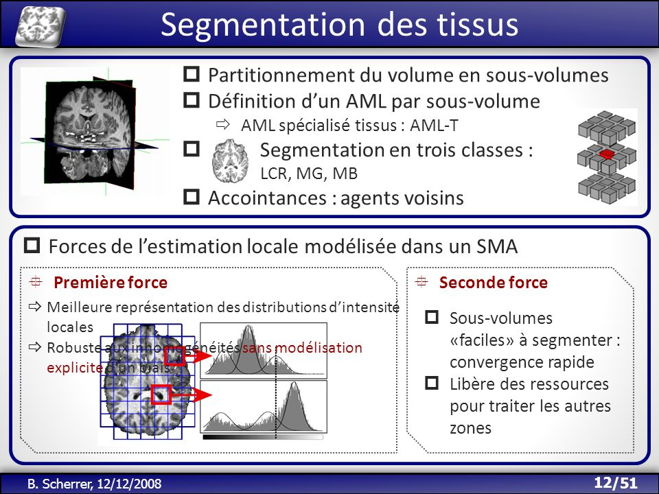 /51 Segmentation des tissus 12 B. Scherrer, 12/12/2008 Partitionnement du volume en sous-volumes Définition dun AML par sous-volume AML spécialisé tis