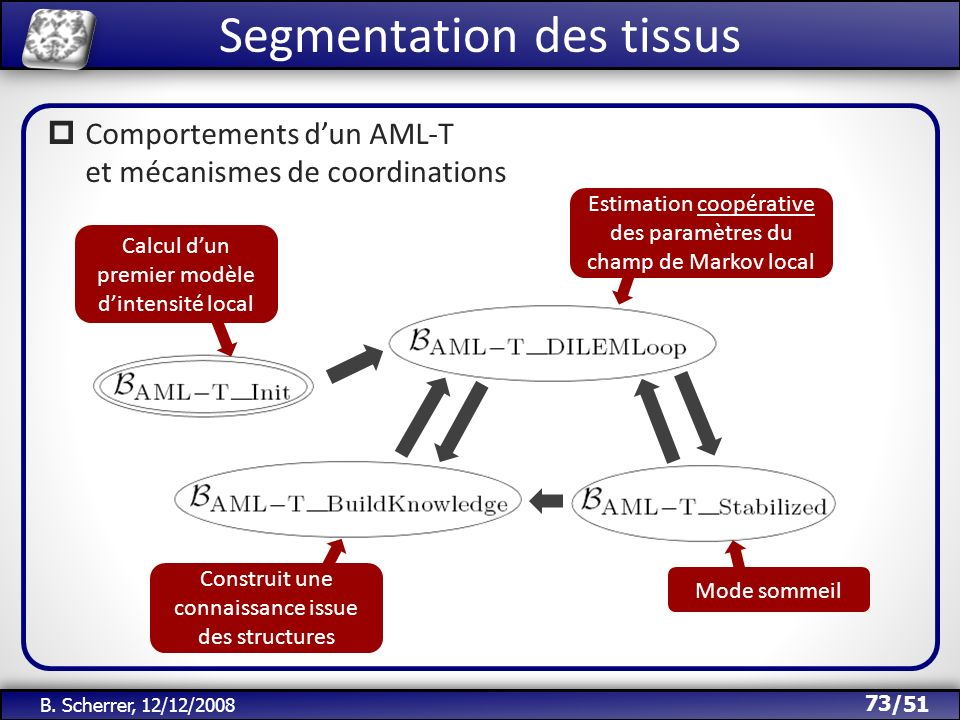 /51 B. Scherrer, 12/12/2008 Segmentation des tissus 73 Comportements dun AML-T et mécanismes de coordinations Calcul dun premier modèle dintensité loc