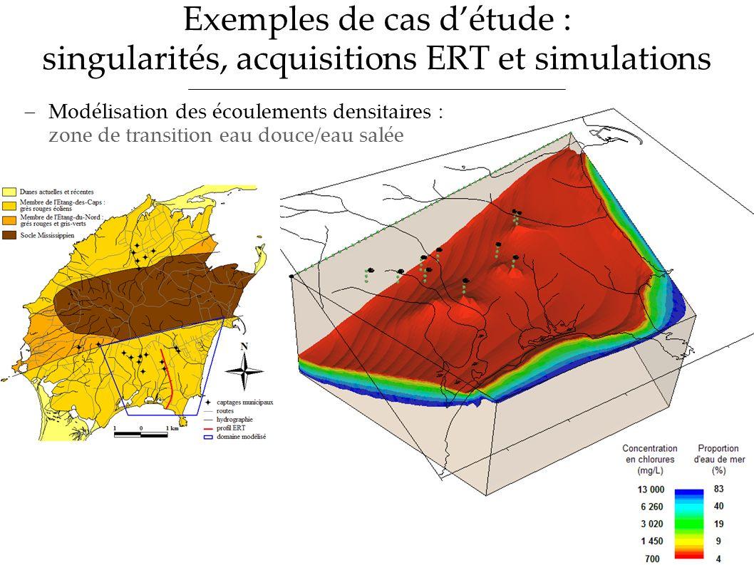 Exemples de cas détude : singularités, acquisitions ERT et simulations Modélisation des écoulements densitaires : zone de transition eau douce/eau sal