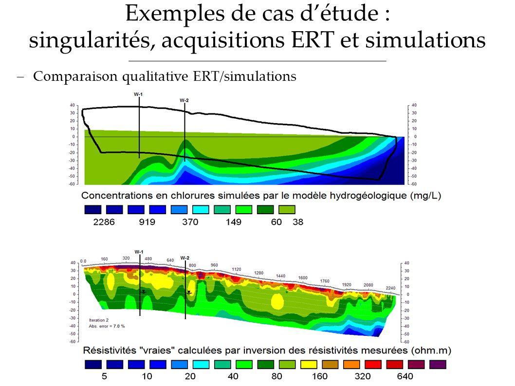 Exemples de cas détude : singularités, acquisitions ERT et simulations Comparaison qualitative ERT/simulations