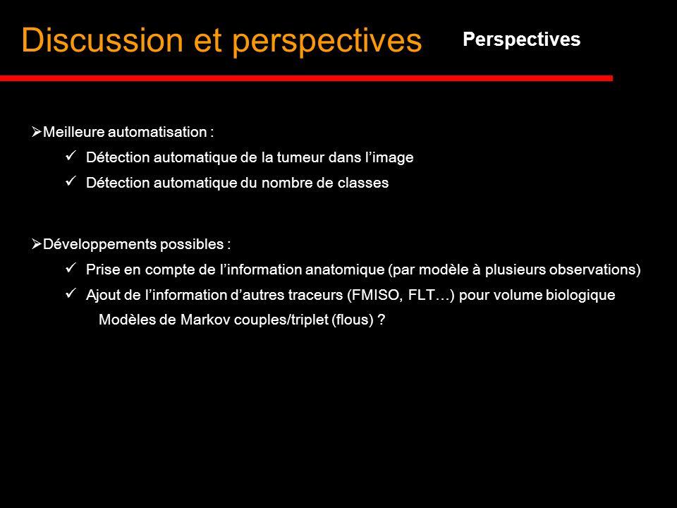 Discussion et perspectives Perspectives Développements possibles : Prise en compte de linformation anatomique (par modèle à plusieurs observations) Aj