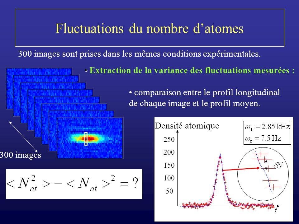 18 Fluctuations du nombre datomes 300 images Densité atomique 50 100 150 200 250 y 300 images sont prises dans les mêmes conditions expérimentales. Ex