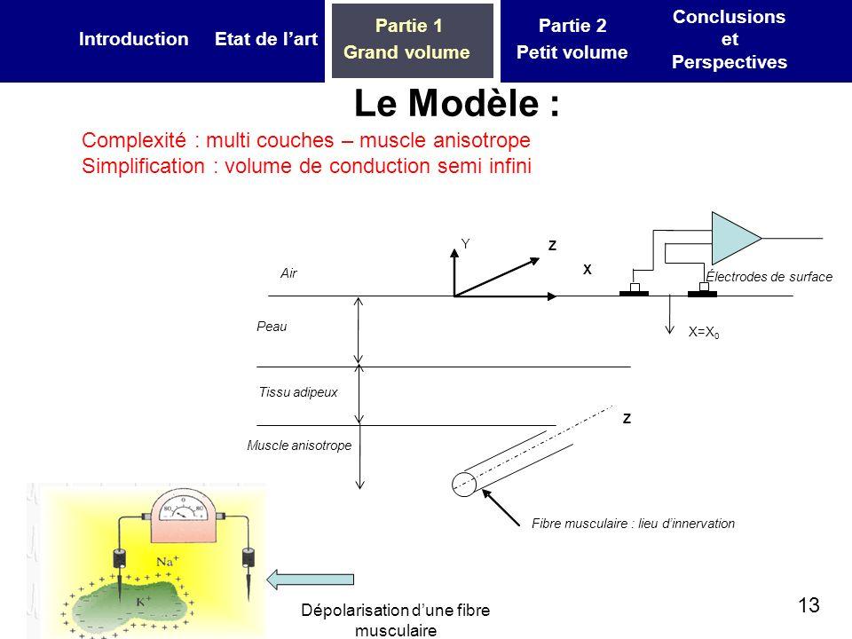 13 IntroductionEtat de lart Partie 1 Grand volume Partie 2 Petit volume Conclusions et Perspectives Tissu adipeux Peau Muscle anisotrope Fibre muscula