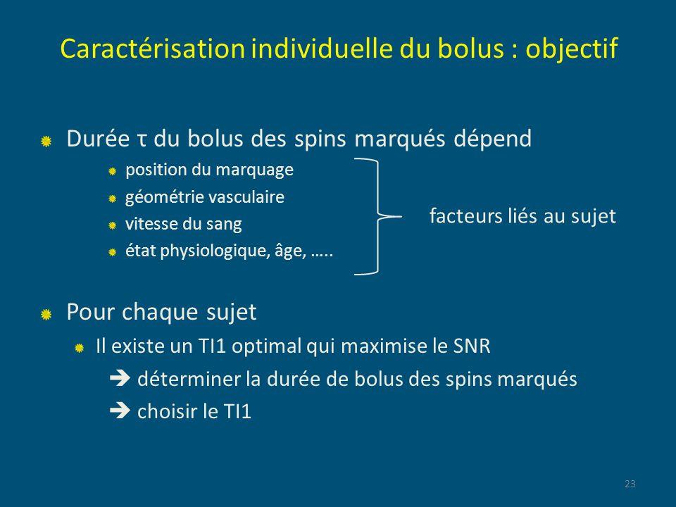 Caractérisation individuelle du bolus : objectif Durée τ du bolus des spins marqués dépend position du marquage géométrie vasculaire vitesse du sang é