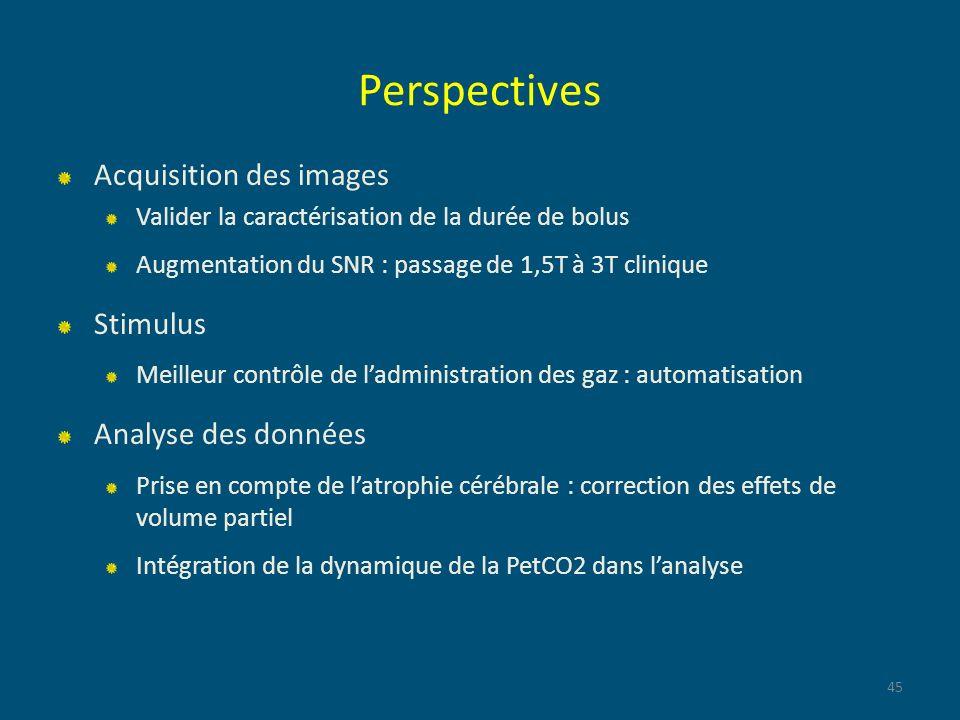 Perspectives Acquisition des images Valider la caractérisation de la durée de bolus Augmentation du SNR : passage de 1,5T à 3T clinique Stimulus Meill
