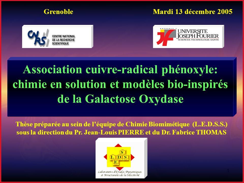 1 Grenoble Mardi 13 décembre 2005 Thèse préparée au sein de léquipe de Chimie Biomimétique (L.E.D.S.S.) sous la direction du Pr. Jean-Louis PIERRE et