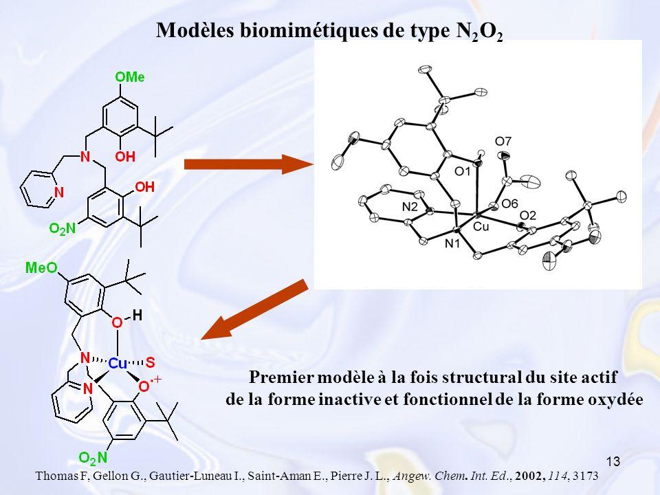 13 Thomas F, Gellon G., Gautier-Luneau I., Saint-Aman E., Pierre J. L., Angew. Chem. Int. Ed., 2002, 114, 3173 Premier modèle à la fois structural du