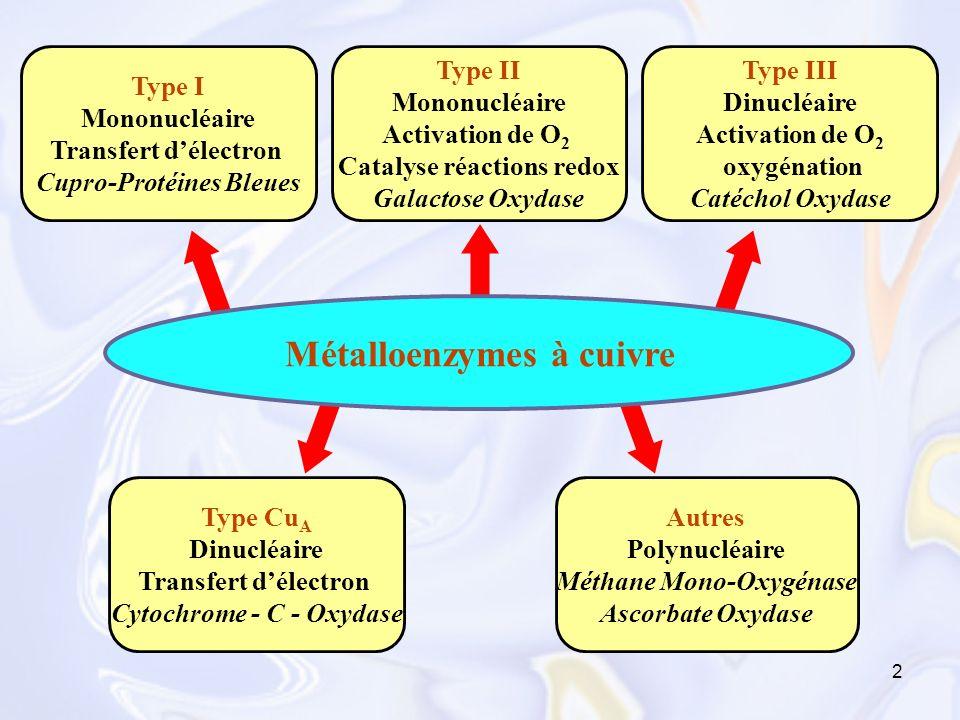 2 Métalloenzymes à cuivre Type I Mononucléaire Transfert délectron Cupro-Protéines Bleues Type II Mononucléaire Activation de O 2 Catalyse réactions r