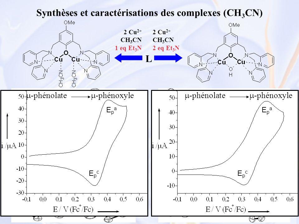 48 Synthèses et caractérisations des complexes (CH 3 CN) L 2 Cu 2+ CH 3 CN 1 eq Et 3 N 2 Cu 2+ CH 3 CN 2 eq Et 3 N -Bandes de transfert de charge -phé