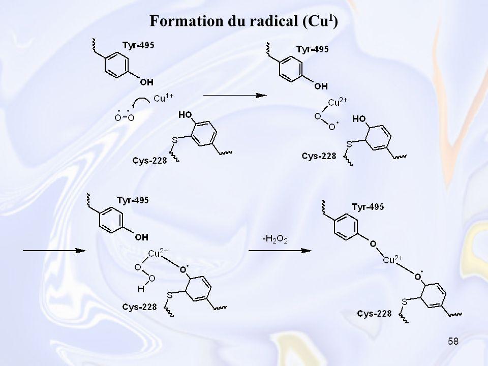 58 Formation du radical (Cu I )