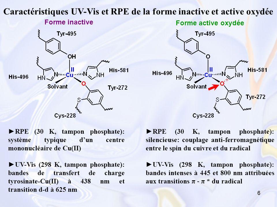 27 Complexes radical phénoxyle-Cu(II) Obtention: électro-oxydation au potentiel E p a des complexes phénolates monomères ou dimères à -40°C, sous gaz inerte Complexes monomères radicalaires: Caractérisation des complexes radicalaires: Spectroscopie UV-Vis Spectroscopie RPE Stabilité (temps de demi-vie)
