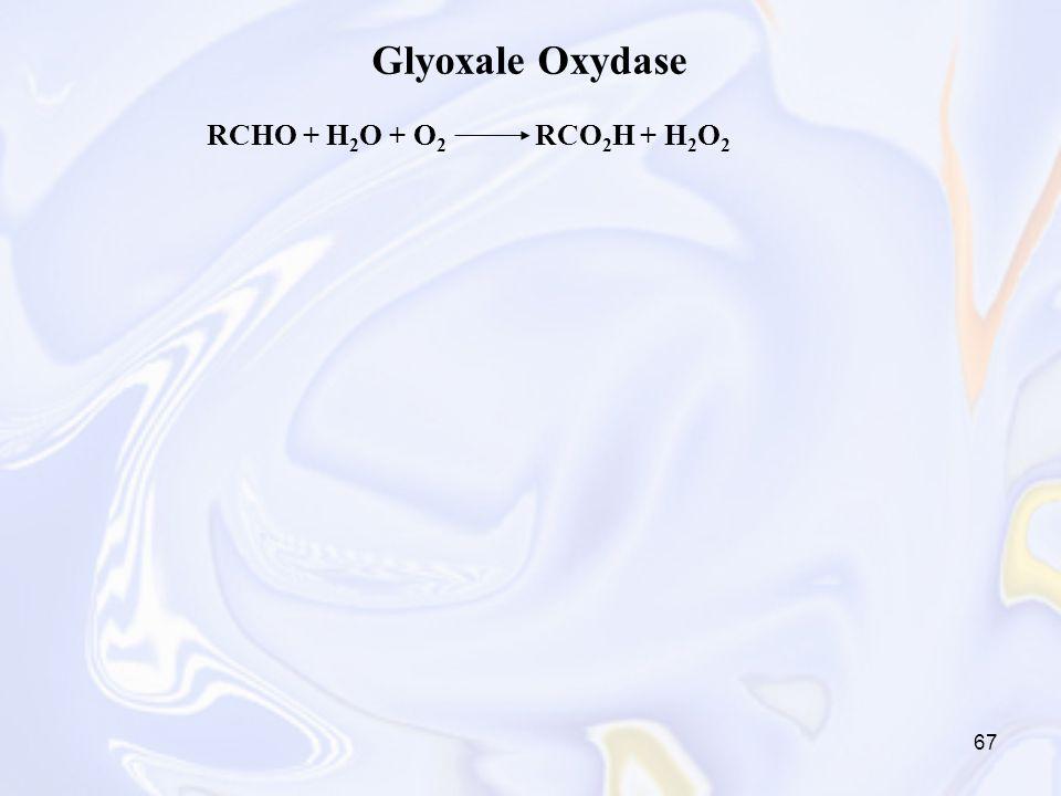 67 Glyoxale Oxydase RCHO + H 2 O + O 2 RCO 2 H + H 2 O 2