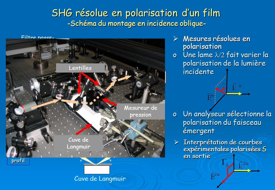 Génération de second harmonique Processus SHG : met en jeu la polarisation du second ordre SHG Tenseur de susceptibilité dordre 2 Mesure SHG Excitation à 800 nm à 800 nm