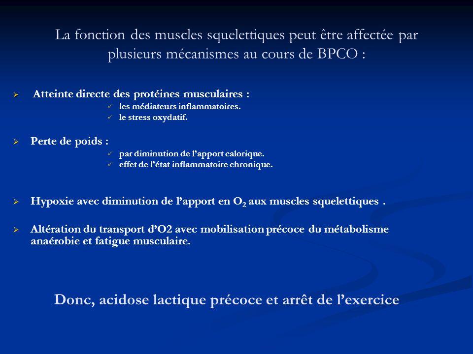 La fonction des muscles squelettiques peut être affectée par plusieurs mécanismes au cours de BPCO : Atteinte directe des protéines musculaires : les