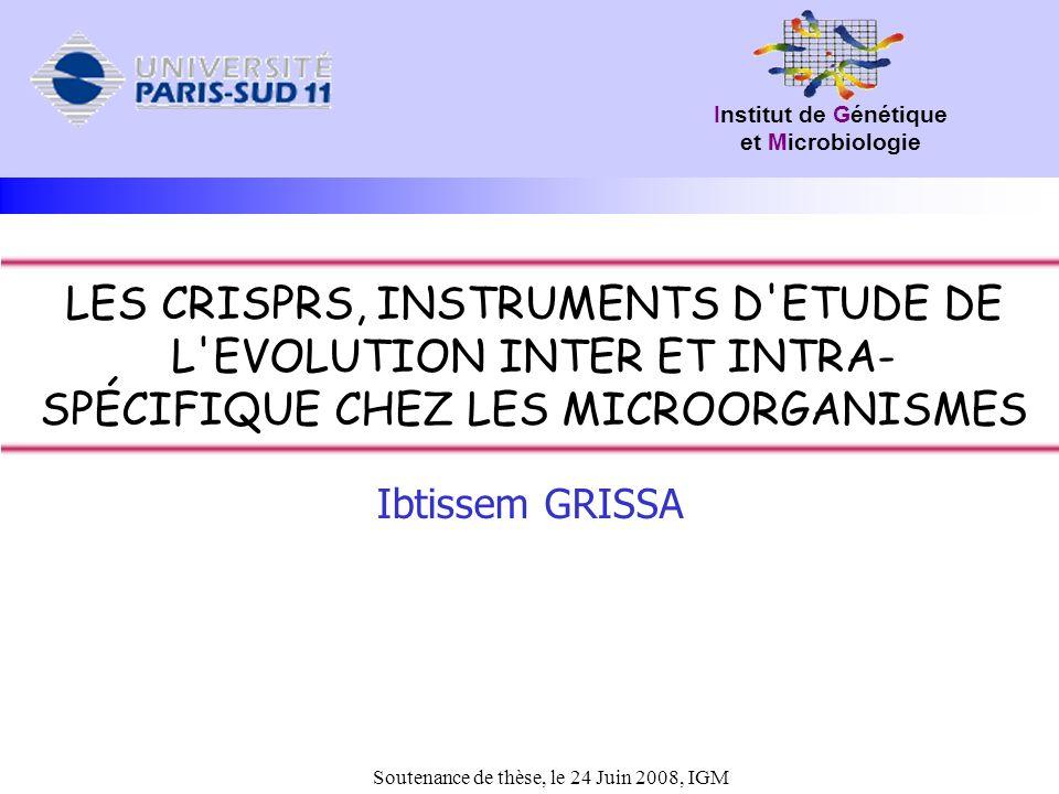 Introduction Résultats Discussion Perspectives 32 Organisation du CRISPR (1) Structure secondaire (kunin 2008) Clustering des DR (12 groupes) (kunin 2008, Horvath 2008) DR Le DR : EspècetailleDR Bacteroides fragilis47GCTGTTTCCAATGGTTCAAAGATACTAATTTGAAAGCAAATCACAAC Streptococcus pyogenes36GTTTTAGAGCTATGCTGTTTTGAATGGTCCCAAAAC Mycobacterium tuberculosis 36GTCGTCAGACCCAAAACCCCGAGAGGGGACGGAAAC Escherichia coli29CGGTTTATCCCCGCTGGCGCGGGGAACTC Yersinia pestis28GTTCACTGCCGCACAGGCAGCTTAGAAA Pyrobaculum aerophilum25CCAGAAATCAAAAGATAGTTGAAAC Thermotoga petrophila30GTTTCAATAGTTCCTTAGAGGTATGGAAAC Taille : 23-47pb, terminaison particulière : (C/G)AA(A)(G/C) Diversité dun CRISPR à lautre (533 DR distincts pour 873 CRISPRs) Conservation presque parfaite au sein dun même CRISPR Discussion