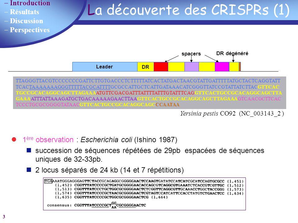 Introduction Résultats Discussion Perspectives 14 Les programmes utilisés Patscan p1=24...47 15...70 p1 Consensus pattern (60 bp): GTGTTCCCCGCGCATCGCGGGGGTTGAAGGGTCAGGTCTGCATCAACGATCGCCCACTCC TRF Repeat size Start position Programmes non spécifiques aux CRISPRs Besoin de traitement manuel supplémentaire Besoin dautomatisation Définition des limites du DR REPuter Résultats