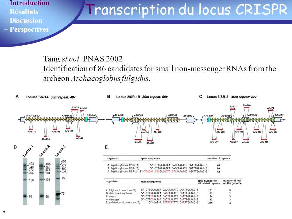 Introduction Résultats Discussion Perspectives 8 Origine des spacers Acquisition du spacer à partir déléments génétiques préexistants dorigine extrachromosomique (phages, plasmides) ou chromosomique Génomes analysés Spacers analysés Spacers reconnus phagesplasmideschromosome 67450088 (2%)47 (54%)10 (11%)31 (35%) (Mojica 2005) 2005 : origine des spacers et suggestions sur le rôle du CRISPR Mojica 2005 Pourcel 2005Bolotin 2005 67 procaryotes Streptococcus thermophilus S.